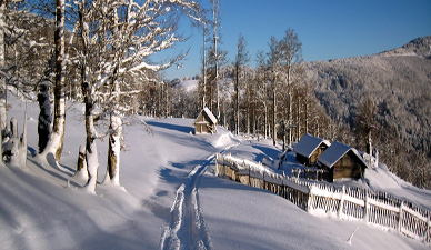 andrijevica winter snow