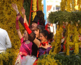 Feast of mimosa Herceg Novi